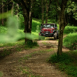 Black and red Jeep driving through trees on an all terrain course