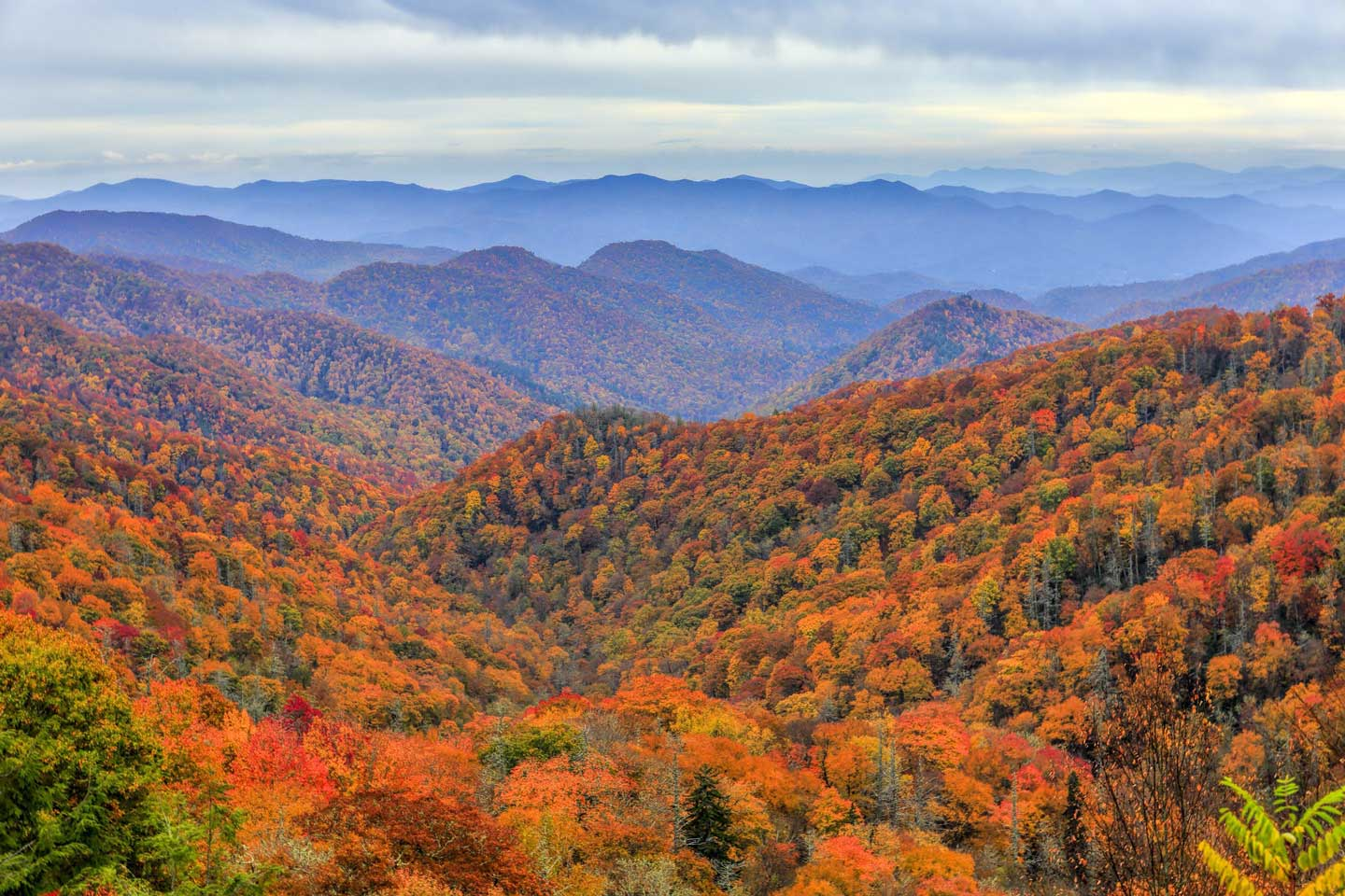 The Great Smoky Mountains with Fall colors